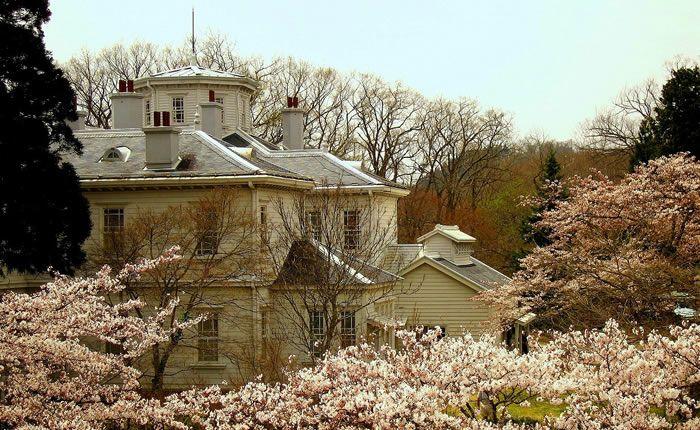 満開の桜の中の天鏡閣・迎賓館