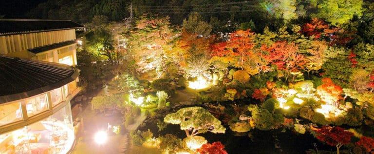 ライトアップされた美しい四季彩 一力